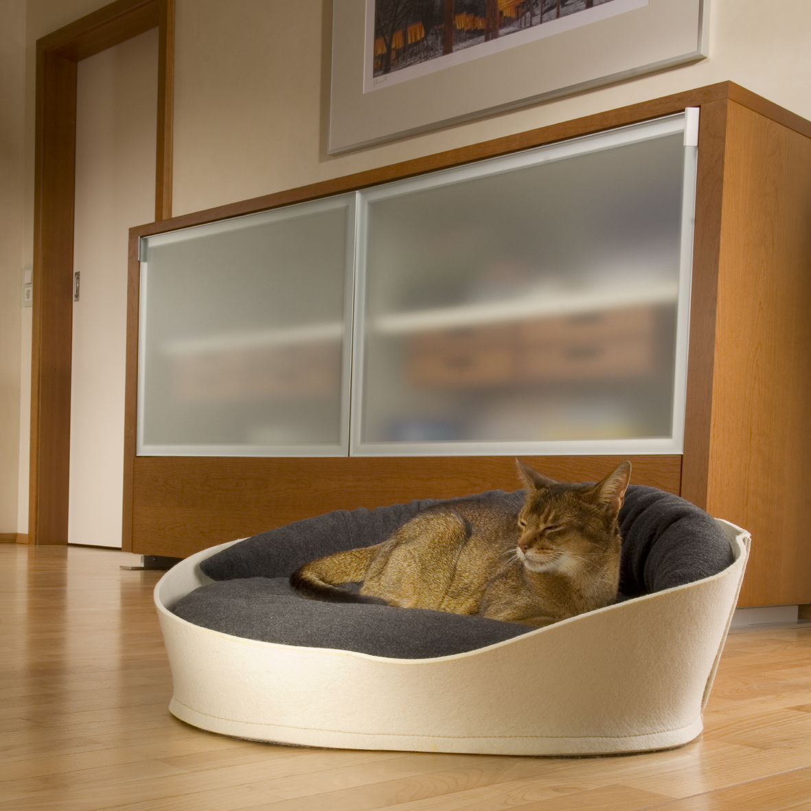 Luxury pet interior design object