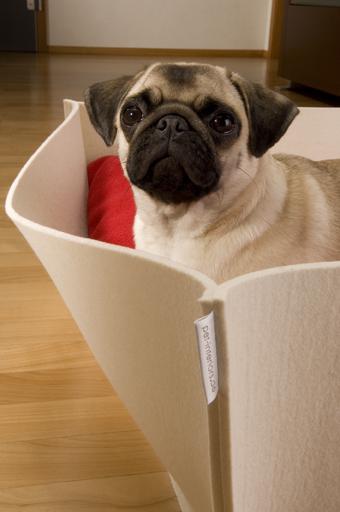 Designer place for pets