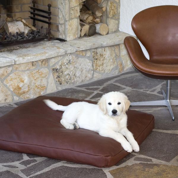stylish leather pet place
